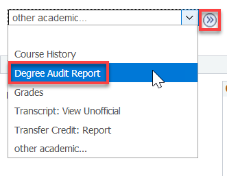 Degree Audit Report