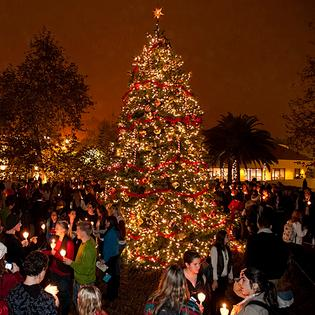 The Pepperdine community will gather for the ninth annual Christmas Tree Lighting ceremony at Mullin Town Square on Thursday, November 30, at 6 PM.