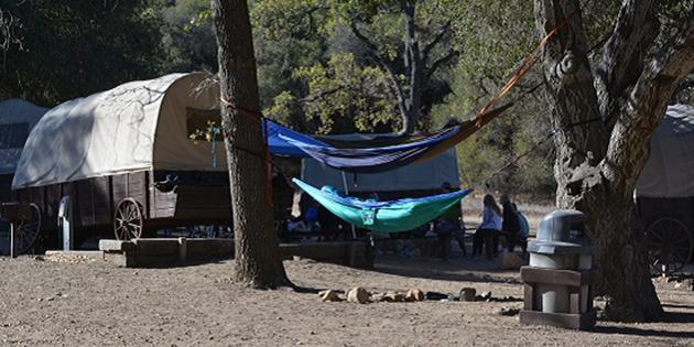 wagons and hammocks